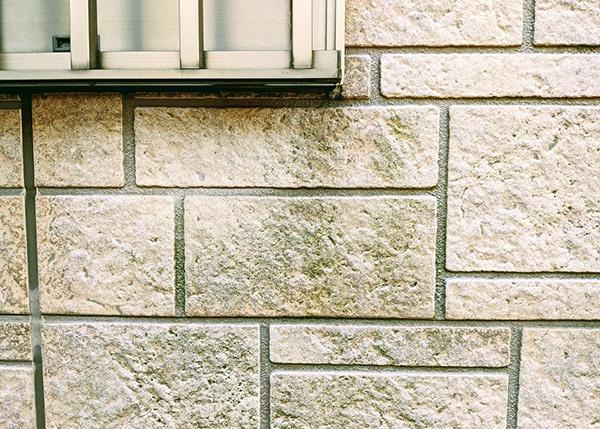 苔の生えた外壁