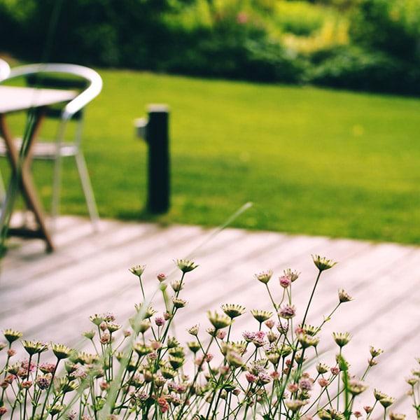 キレイなガーデンと花
